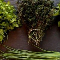 Aromatic-Herbs-Experience